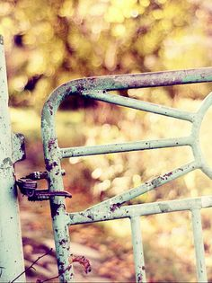 Autumn Country Gate @pinathread