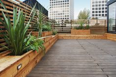 Roof Deck, Rooftop Terrace, Rotterdam, My House, Indoor, House Styles, Outdoor Decor, Plants, Design
