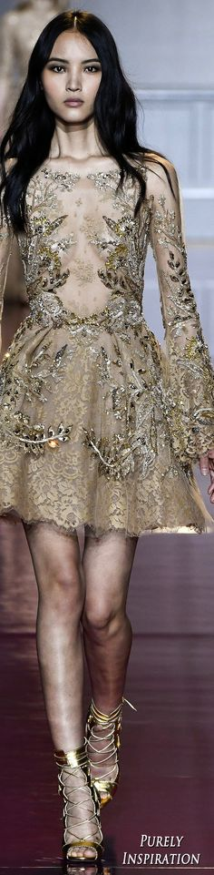 Zuhair Murad Fall 2016 Couture Fashion Show More