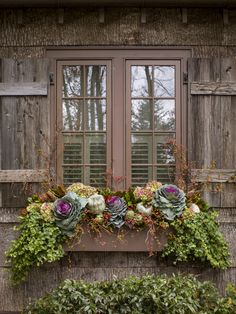 Fall Window box (With images) Fall Planters, Flower Planters, Garden Planters, Winter Window Boxes, Fall Containers, Succulent Containers, Container Flowers, Container Plants, Container Gardening