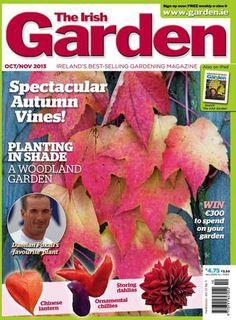 The Irish Garden Magazine is digitally published using Issuu Woodland Garden, Shade Plants, Vines, Ireland, Irish, Magazine, Digital, Art, Art Background