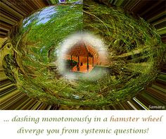 ... dashing monotonously in a hamster wheel diverge you from systemic questions!