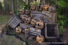 """DIY """"tortured pumpkins"""""""