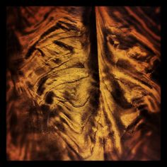 madeira...esqueleto