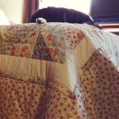 Who cares what your room looks like!!? Just do a closeup.  And, get your doggy in there.  From--stephanie fizer coleman -- illustration/pattern - blog - Quilt!