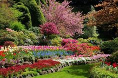 spring full sunken garden bloom The Most Beautiful Gardens In The World You Have To Visit In a Lifetime Most Beautiful Gardens, Beautiful Roses, Amazing Gardens, Isla Victoria, Buchart Gardens, Gardens Of The World, Sunken Garden, English Country Gardens, Backyard Paradise