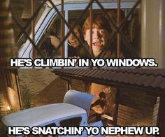Hagrid!