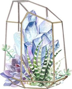 Greenhouse goals dreaming of springtime while savoring succulents & watercolor techniques🖌️ by SouthPrints Experience watercolors & pencils from + brushes from & fine papers by all at 🎨 Crystal Illustration, Watercolor Illustration, Watercolor Paintings, Watercolour, Painting Inspiration, Art Inspo, Crystal Drawing, Guache, Box Art