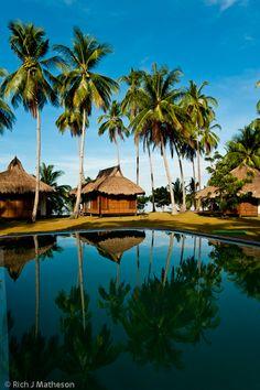 Tropical palms trees shade resort beach huts and Swimming Pool