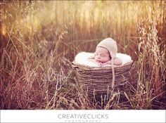 There is just something about babies in a basket that i love.