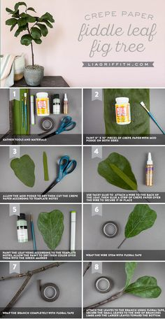 Fit as a Fiddle ✨ Our maker, Meagan is back at it again with this crepe paper fiddle leaf fig tree. We'll share the special technique Meagan uses to make this project crazy realistic. So gather your tools and materials, follow along with our tutorial here and you'll be fit as a fiddle to make this impressive tree https://liagriffith.com/crepe-paper-fiddle-leaf-fig-tree/ * * * #crepepaper #crepepaperrevival #crepepaperflowers #figtree #fiddleleaffig #leaves #paper #papercut #papercraft…