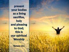 romans 1   Romans 12-1 Living Sacrifice-gold
