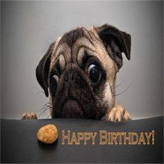 Alles Gute zum Geburtstag - http://www.1pic4u.com/1pic4u/alles-gute-zum-geburtstag/alles-gute-zum-geburtstag-487/