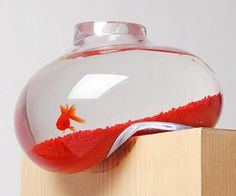 Daliesque. Dr. Suess fish bowl.