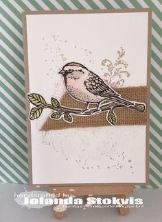 My Card and craftworld, SU! Best Birds