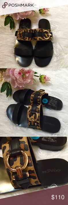 HPCoach Cindy Leopard Sandal SS13-Brand new Coach Leopard Leather Slip-on Sandals with gunmetal hardware. Shies have an edgy look with the leopard leather and perfect to slip on with these hot summer days. NWOT Coach Shoes Sandals