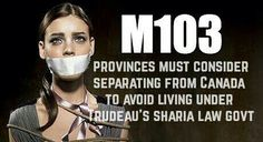 Webmail :: We think you might like these Pins Political Memes, Politics, White Guilt, Sharia Law, Justin Trudeau, World View, Freedom Fighters, Truth Hurts, Social Issues