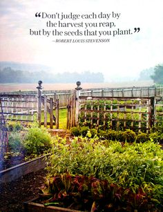 """""""Don't judge each day by the harvest you reap, but by the seeds you plant."""" – Robert Louis Stevenson"""