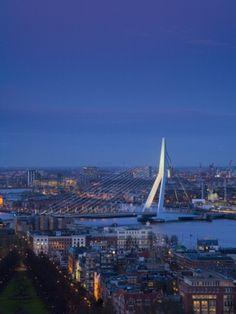 Rotterdam and the 'white swan'