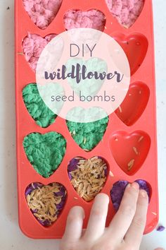 DIY Wildflower Seed Bombs. Learn how to make your own with local wildflower seeds to save the bees. Perfect Earth Day craft for kids.
