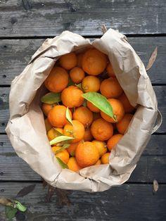 Photo of a bag of Rangpur Limes for making Rangpur Lime Marmalade