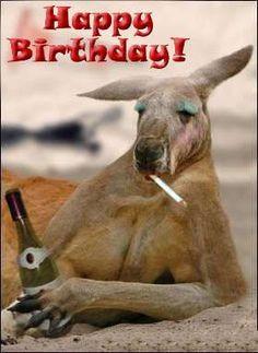 kangaroo happy birthday