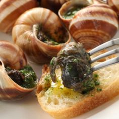 James Beard Escargot Recipe