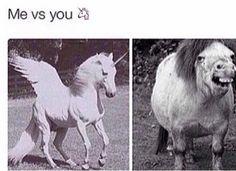 Me vs you