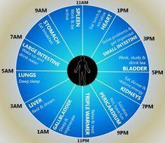 Ceasul organismului. Te trezesti la aceeasi ora in fiecare noapte? - Articole / Sanatate - AstroCafe