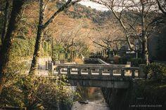 THE PHILOSOPHER'S WALK, Kyoto
