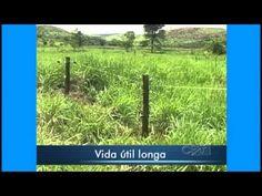 Curso Cerca Elétrica para Pastejo Rotativo - Vantagens e Desvantagens - ...