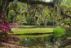 Brookgreen Gardens was named one of the top 10 public gardens in the US by TripAdvisor. This incredi... - L Griffith/Flickr
