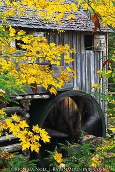 Cable Mill - As the leaves spin from October, so does the water wheel on the old Cable Mill in Cades Cove.  Great Smoky Mountains National Park, Tennessee.