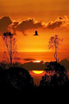 Be the Sunset ~ Dreamy Nature