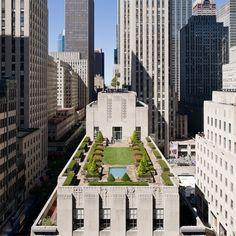 New York roof top garden