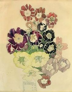 Polyanthus Walberswick 1915, a painting by Charles Rennie Mackintosh.