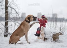 Photographer Andy Seliverstoff Andy Seliverstoff Pinterest - Tiny children and their huge dogs photographed in adorable portraits by andy seliverstoff