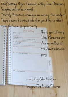 goal setting page, day planner, direct sales planner, www.theprintedplanner.com, 2016, direct sales,