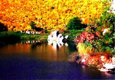 Lago San Roque. Un rincón del lago que formado por el embalse del mismo nombre en Villa Carlos Paz, Córdoba, Argentina. Se accede después de recorrer el camino de las 100 curvas.