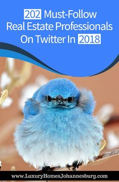 Have you been trying out Twitter, yet haven't quite found out why so many real estate professionals on Twitter are raving about it? Make sure to read this!