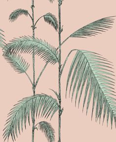 Palm Leaves Alabaster Pink and Mint wallpaper by Cole & Son
