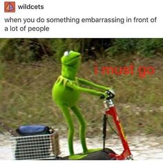 I don't know why the Kermit memes always make me laugh so hard.