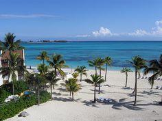 Sheraton, Bahamas - wedding spot!