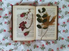 flower and book