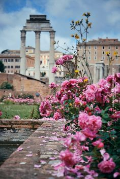Roman Forum, Rome, Italy ♠ by Songquan Deng on 500px