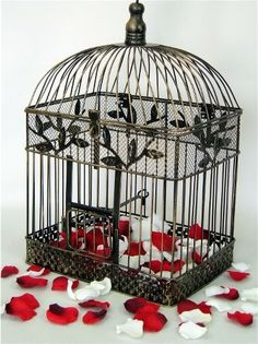 Image detail for -Decorative bird cage card holders : All the Style Details : Forums ...