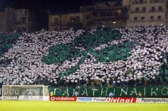 Panathinaikos Ultras Football, Sports Clubs, City Photo, Greece, Soccer, World, Pride, Around The Worlds, Curves