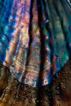 Iridescent Waves