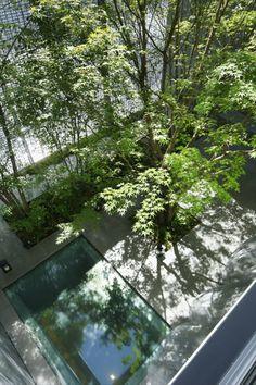 optical-glass-house