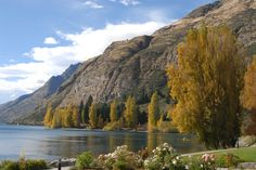 New Zealand - Place of tranquility